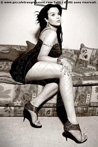 3° foto di Silvana Trans escort