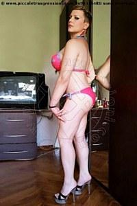 trans asia torino foto 1